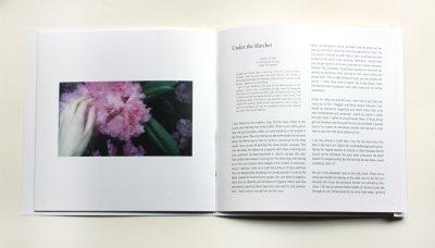 ida-book-large-400x228-q85